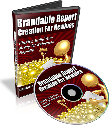 Product picture Brandable Report Creation For Newbies Video Tutorial MRR
